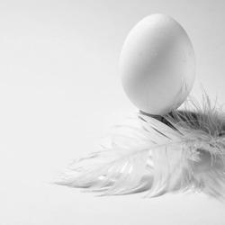 En ce jour de Pâques, l'oeuf est le symbole de vie et de renaissance. Comme la poule qui fait l'oeuf qui fait la poule. SAINT LAZARE crée et recycle à l'infini... #upcycling #surcyclage #recyclage